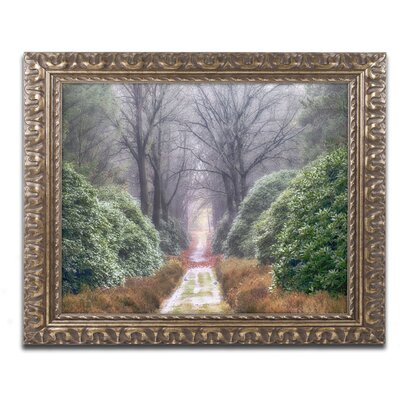picture of Rhododendron Lane by Cora Niele Framed Photographic Print