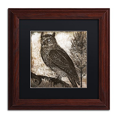 "picture of Trademark Fine Art ALI4215-W1111BMF ""Owl 2"" Artwork, 11x11"""