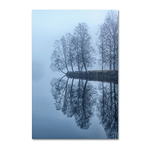 picture of Trademark Fine Art Foggy River Day Wall Decor