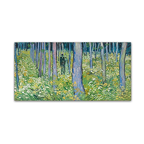 picture of Trademark Fine Art Undergrowth with Two Figures Wall Decor
