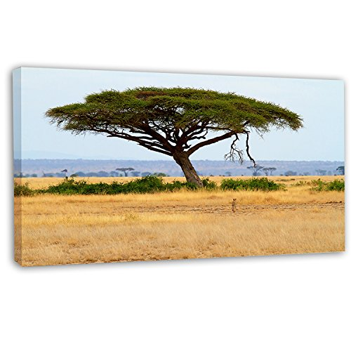 picture of Design Art PT12900-32-16 Acadia Tree & Cheetah in Africa - Oversized African Landscape Canvas Art,,32x16